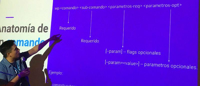 Luis Franco describe la anatomía de un comando en WP-CLI